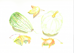 White Pumpkin with Gourd & Leaves